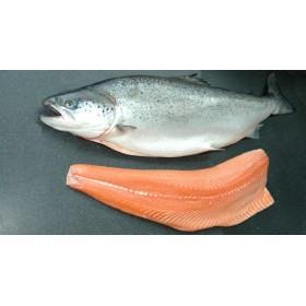 Air Flown Norwegian Salmon (Whole) (4.5kg±)